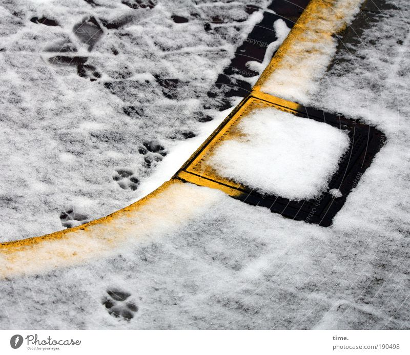 Water White Black Yellow Street Snow Tracks Footprint Paw Dazzle Paving stone Weather Drainage Gully Curbside Skid marks