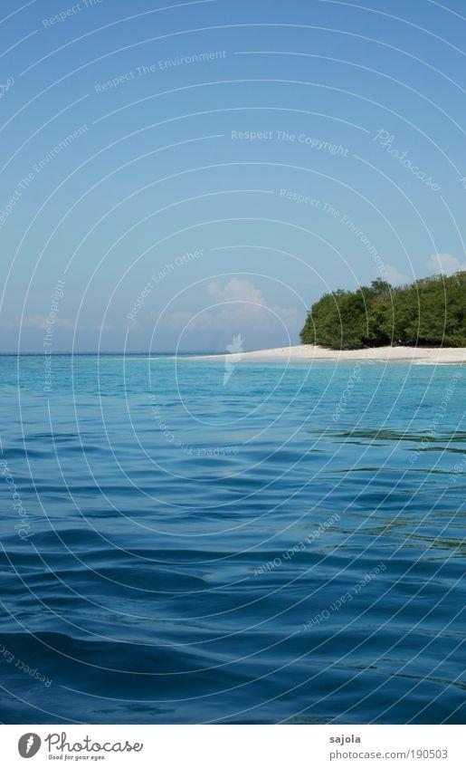 Nature Water Sky Tree Ocean Green Blue Summer Beach Vacation & Travel Sand Landscape Waves Environment Horizon Trip
