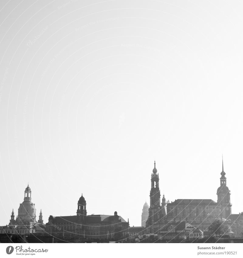 double-d-town Tourism Sightseeing Exhibition Culture Cloudless sky Dresden Town Downtown Old town Skyline High-rise Church Dome City hall Bridge Tower