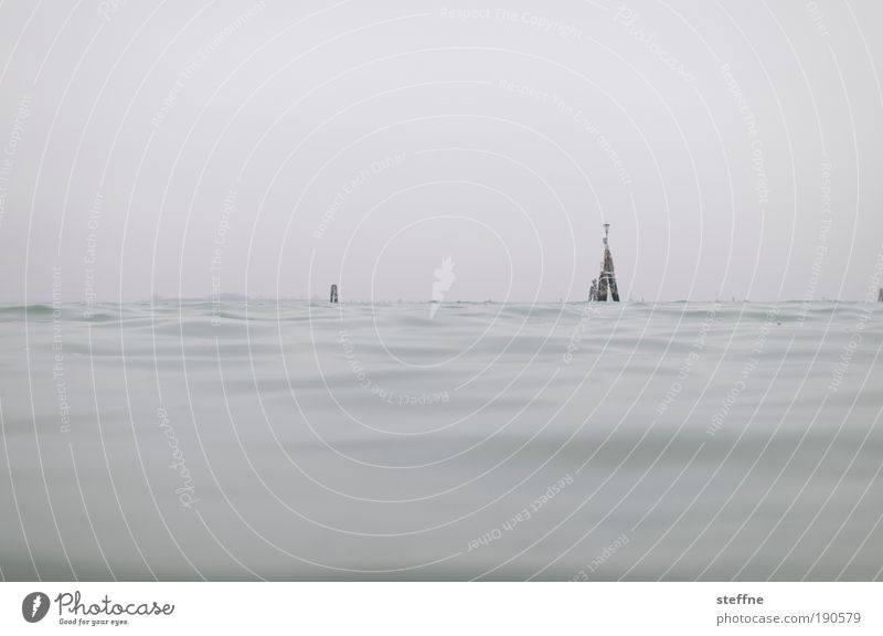 Ocean Winter Autumn Waves Fog Swimming & Bathing Navigation Float in the water Surface of water Venice Dreary Cloudless sky Port City Adriatic Sea