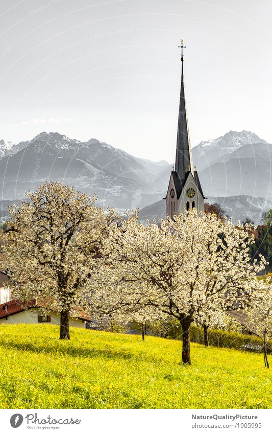 church in fraxern Vacation & Travel Summer Nature Landscape Spring Hill Alps Mountain Air Traffic Control Tower Federal State of Vorarlberg Austria village town