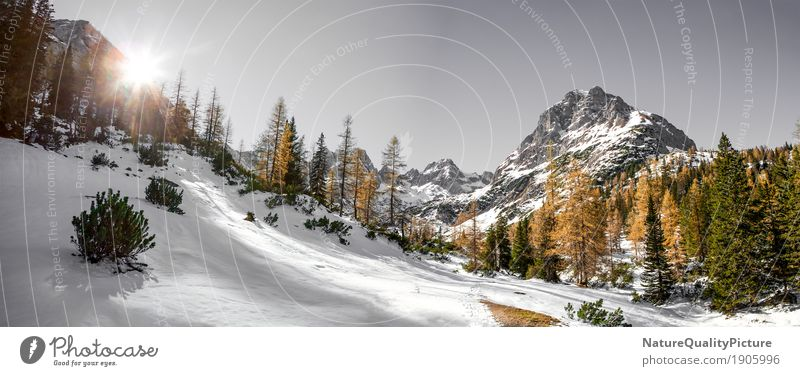 Nature Vacation & Travel Sun Winter Mountain Germany Hiking Snowcapped peak Cloudless sky Austria Federal State of Tyrol Alpine