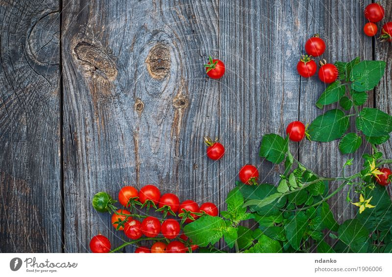 branch of small red cherry tomatoes with green stem Vegetable Nutrition Eating Vegetarian diet Table Nature Wood Old Fresh Juicy Gray Green Red Tomato Top
