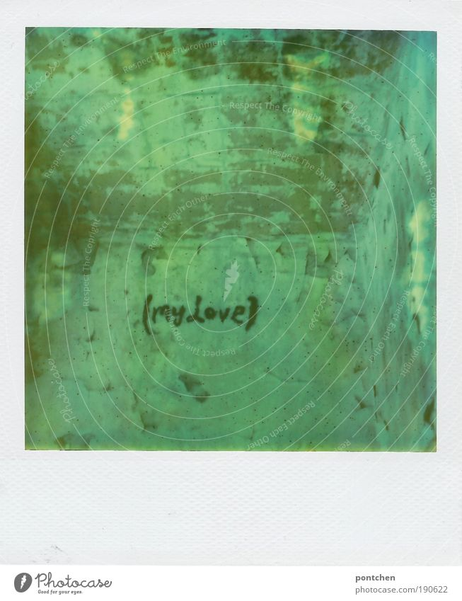 Polaroid shows space. Plaster crumbles from the walls. On one wall is Max Love. Romance, decay. Lost place Youth culture Subculture