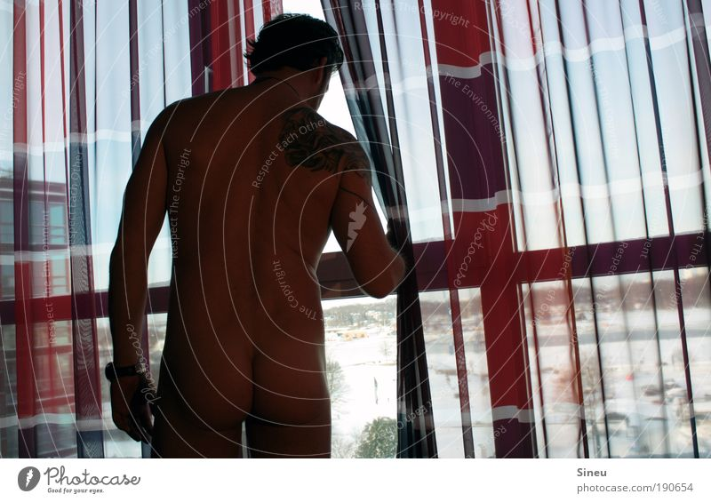 Human being Man Red Calm Adults Relaxation Window Eroticism Naked Think Healthy Power Back Skin Masculine Stand