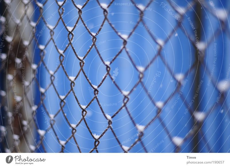<><><><> Winter Snow Blue Wire netting fence Get stuck Heap Wire fence Cold entangled Captured penned Grating Protection Fenced in Colour photo Exterior shot