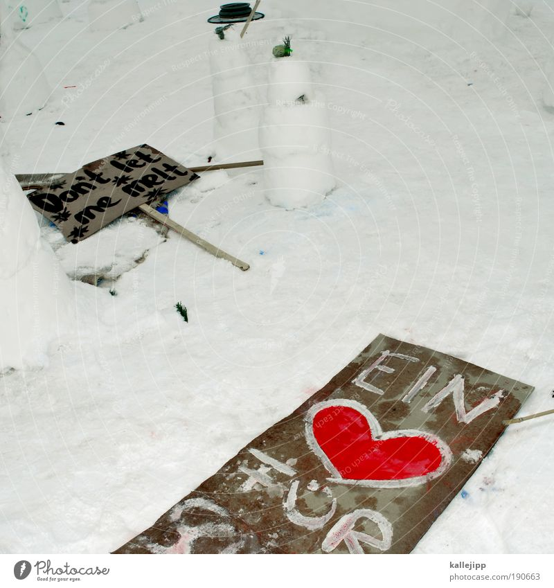 hard but hearty Lifestyle Art Artist Environment Winter Climate Climate change Weather Ice Frost Snow Sign Characters Signs and labeling Signage Warning sign