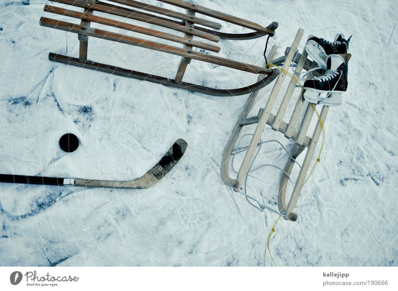 Water Winter Joy Cold Snow Sports Playing Lake Ice Leisure and hobbies Lifestyle Frost Driving Sports Training Stick Pond