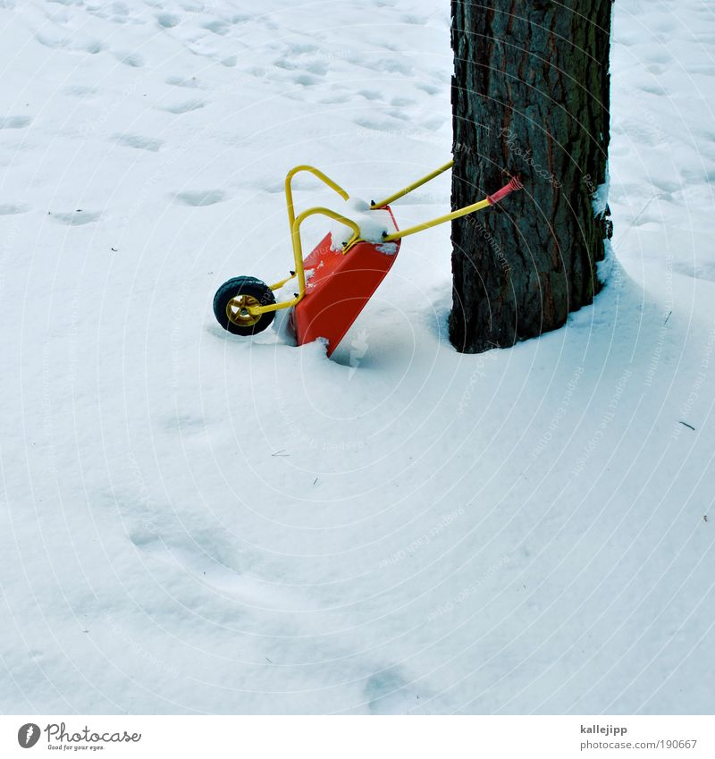Tree Winter Work and employment Snow Playing Environment Garden Leisure and hobbies Infancy Construction site Profession Craft (trade) Economy Craftsperson