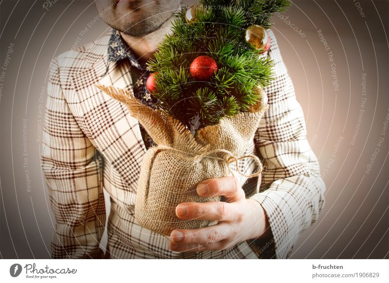 Human being Man Plant Christmas & Advent Joy Adults Small Feasts & Celebrations Brown Masculine Retro Stand Arm Fingers Gift Christmas tree