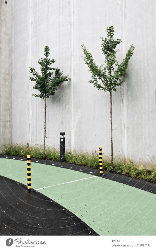 racecourse Tree Deserted Wall (barrier) Wall (building) Concrete Signs and labeling Signage Warning sign Esthetic Gray Green Odysseum Running track Racecourse
