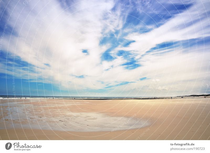 Sky Vacation & Travel Summer Calm Clouds Far-off places Beach Happy Freedom Sand Horizon Weather Contentment Air Tourism Waves