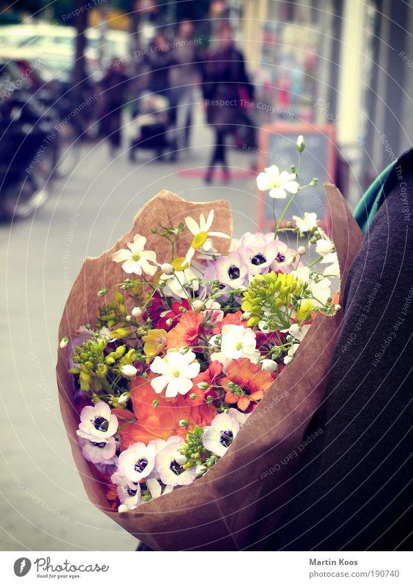 Human being Flower Colour Emotions Wait Exceptional Fresh Esthetic Bouquet Fragrance Odor Retentive