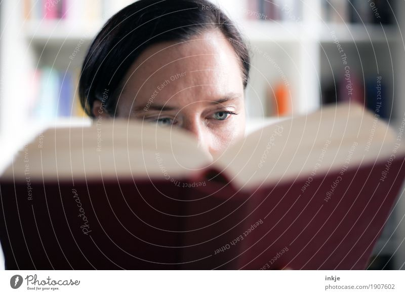 Woman reads in a book Lifestyle Leisure and hobbies Reading Bookshelf Education Adult Education Study Library Adults Face 1 Human being 30 - 45 years