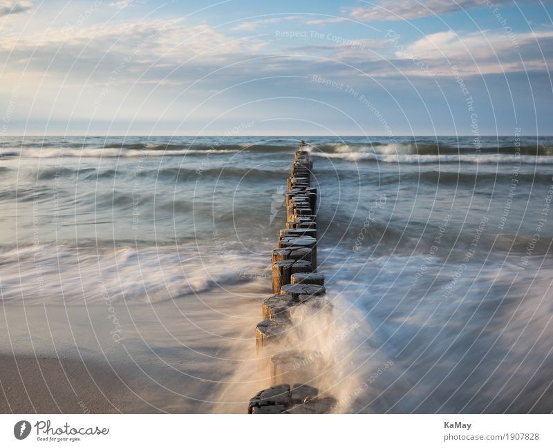 Groynes washed by the sea Calm Vacation & Travel Freedom Summer Ocean Waves Nature Landscape Water Clouds Horizon Coast Baltic Sea Blue groynes Body of water