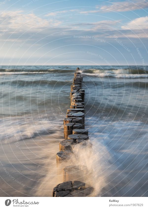 Waves, sea and groynes Calm Summer Ocean Nature Landscape Water Clouds Horizon Coast Baltic Sea Fluid Blue Far-off places Body of water Germany travel
