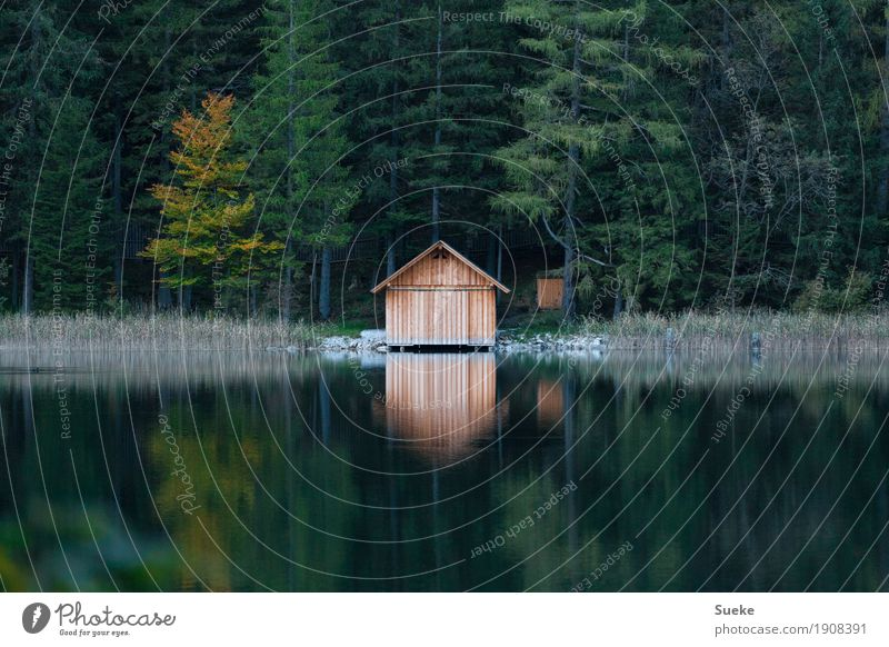 Lake Cabin Trip Mountain Hiking Recreation area Wooden hut Nature Landscape Water Autumn reed Forest Lakeside Lake Leopoldstein Mountain lake Relaxation Dream