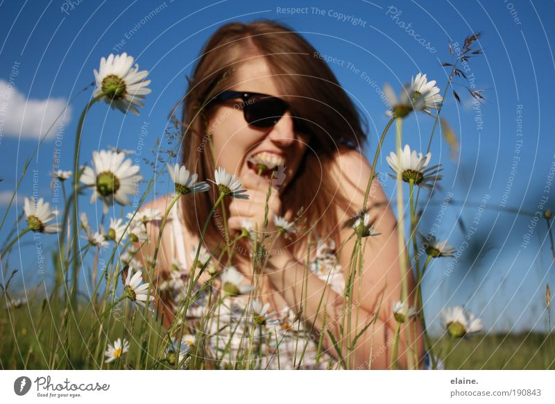 Nature Youth (Young adults) Sky Flower Plant Summer Joy Woman Face Life Feminine Grass Hair and hairstyles Head Action