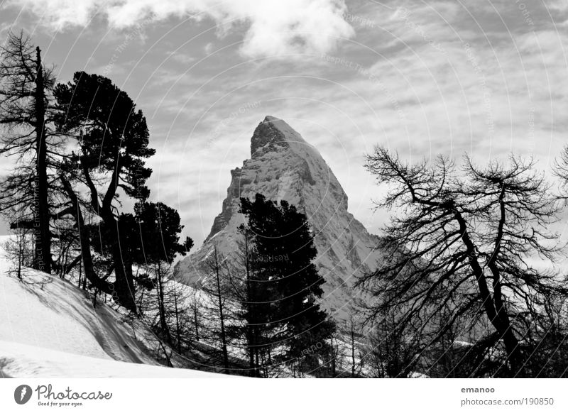 Matterhorn behind it Winter Snow Winter vacation Mountain Snowboard Nature Landscape Plant Climate change Tree Forest Means of transport Train travel