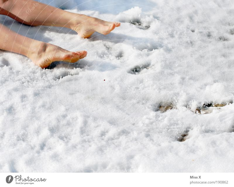 The gardener was it. Legs Feet 1 Human being Winter Climate Weather Ice Frost Snow Garden Park Meadow Cold Crazy Grief Death Lovesickness Fatigue Murder