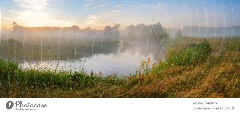 Summer misty sunrise on the river. Foggy river in the morning Nature Vacation & Travel Green Tree Landscape Forest Meadow Grass Freedom Lake Tourism