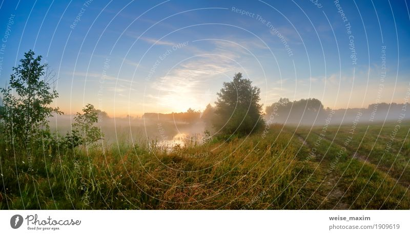 Summer misty sunrise on the river. Foggy river in the morning Sky Nature Vacation & Travel Blue Green Tree Landscape Lanes & trails Meadow Grass Lake Trip Fresh