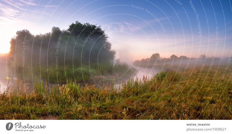 Summer misty sunrise on the river. Foggy river in morning Sky Nature Vacation & Travel Blue Green Tree Landscape Forest Meadow Grass Lake Tourism Fresh