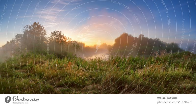 Summer misty sunrise on the river. Foggy river in the morning Sky Vacation & Travel Green Tree Forest Meadow Grass Freedom Lake Tourism Fresh Vantage point