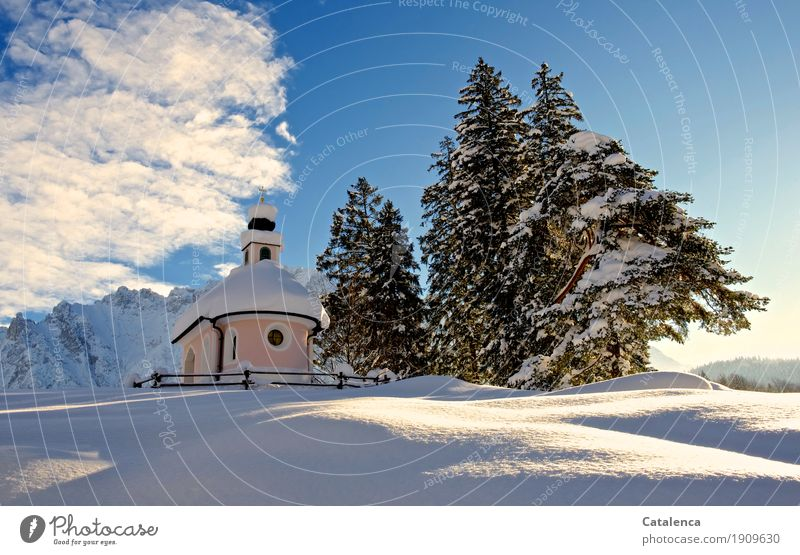 Sky Plant Blue White Tree Landscape Clouds Winter Mountain Black Religion and faith Cold Snow Pink Glittering Church