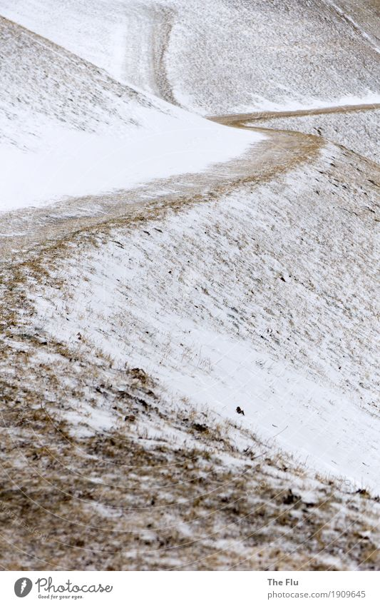 White Landscape Loneliness Winter Mountain Lanes & trails Meadow Grass Snow Brown Snowfall Trip Ice Hiking Italy Hill