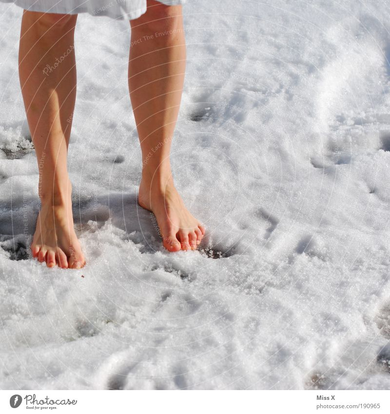 Kneipp cure Human being Legs Feet 1 18 - 30 years Youth (Young adults) Adults Winter Climate Weather Beautiful weather Bad weather Ice Frost Snow Cool (slang)