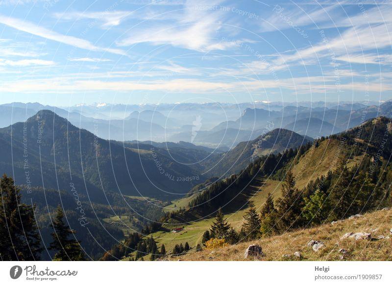 Orientation towards Austria Leisure and hobbies Vacation & Travel Tourism Trip Mountain Hiking Environment Nature Landscape Plant Autumn Beautiful weather Tree