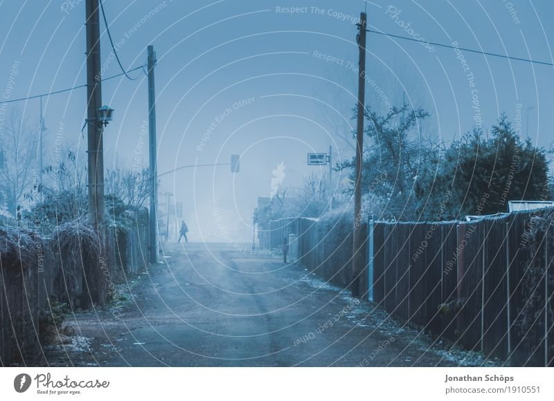 Human being Nature Plant Blue Loneliness Winter Street Cold Sadness Autumn Lanes & trails Fog Ice Transience Grief Frost