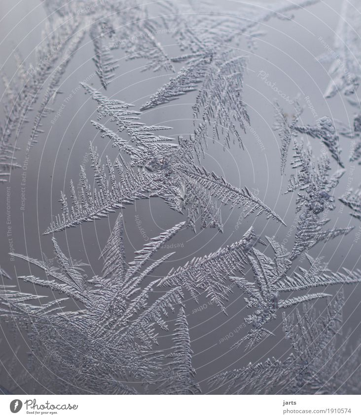 Nature Winter Cold Natural Ice Glass Fantastic Frost Ice crystal Frostwork Glass ball