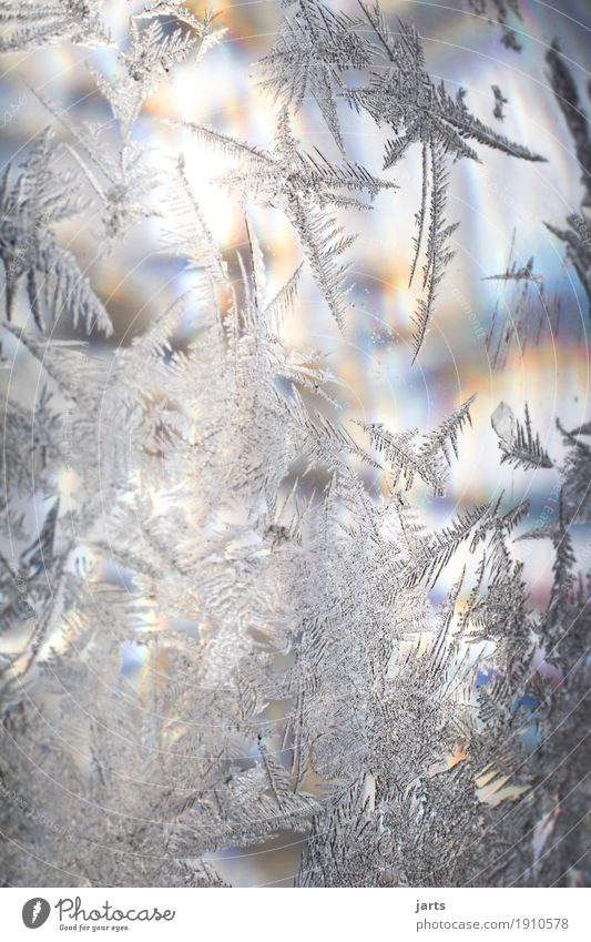 iceflower mitregenbogenfarben Sunlight Winter Beautiful weather Ice Frost Glass Illuminate Cold Positive Frostwork Ice crystal Glass ball Rainbow Colour photo