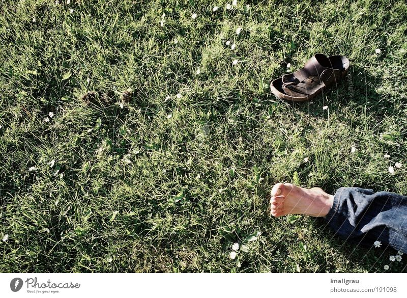 free-foot culture Lifestyle Joy Human being Masculine Feet 1 Lie Leisure and hobbies Sandal Break Relaxation Lawn Daisy Jeans Park Freedom Breathe Toes Green