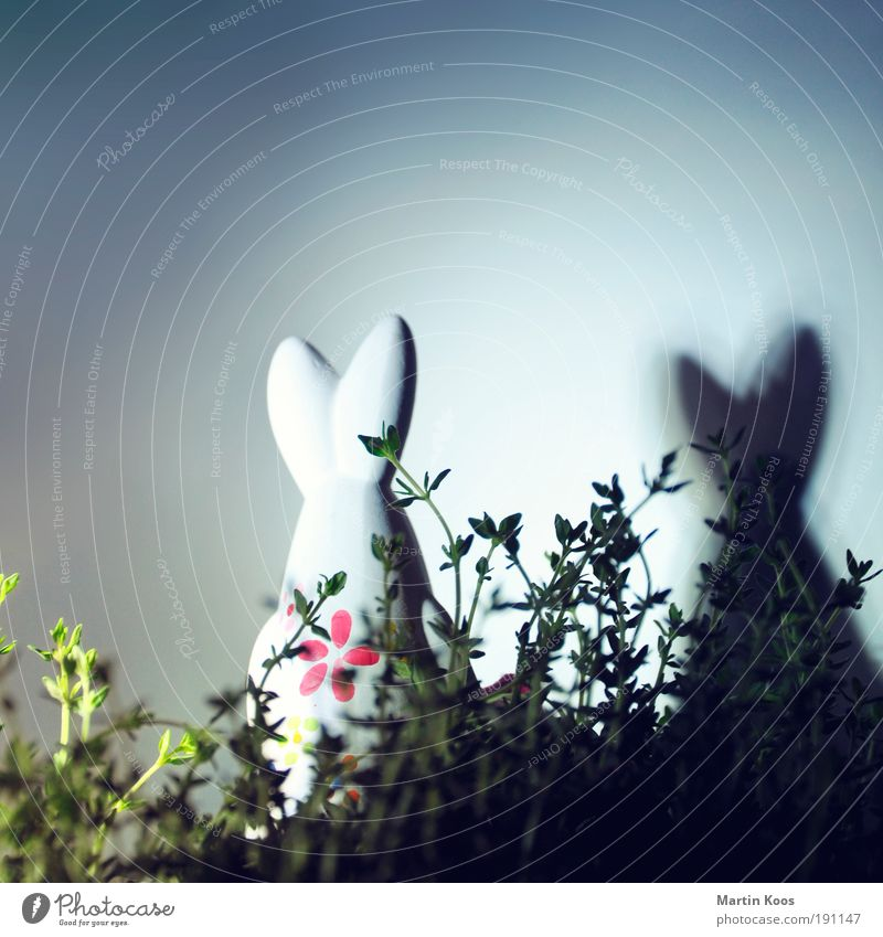 the good the bad and the hidden egg Joy Easter Doll Figure Plant Flower Grass Bushes Forest Hare & Rabbit & Bunny Easter Bunny 1 Animal Blossoming Crouch Jump