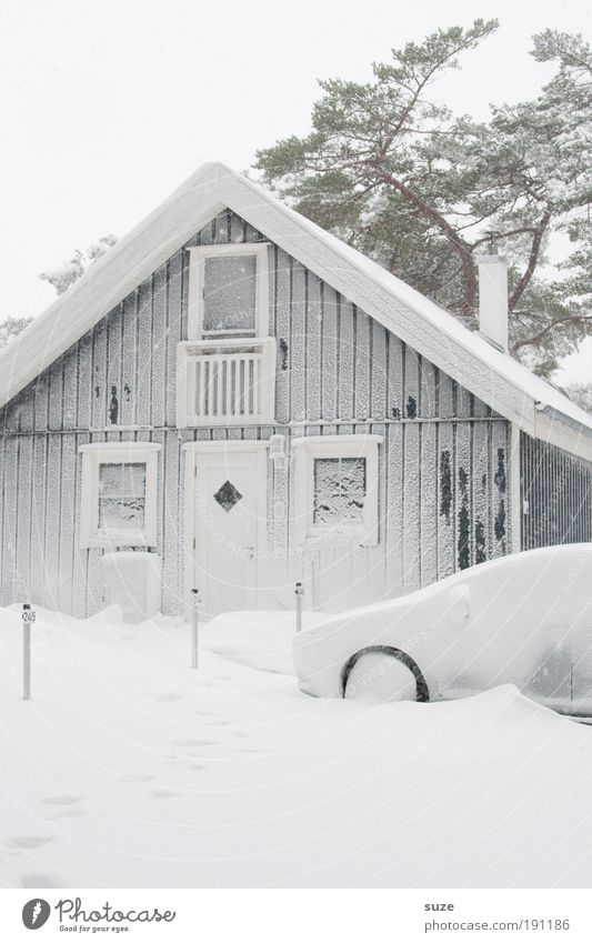 Nature Vacation & Travel White Tree Winter House (Residential Structure) Environment Cold Snow Car Bright Facade Living or residing Frost Hut Vehicle