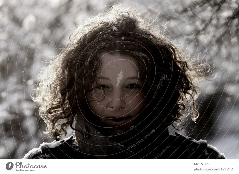 Nature Winter Face Snow Feminine Freedom Happy Hair and hairstyles Head Snowfall Ice Happiness Frost Natural Illuminate