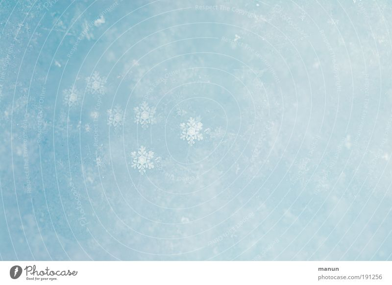snow-flake Style Design Beautiful Well-being Contentment Relaxation Calm Vacation & Travel Winter vacation Nature Ice Frost Snow Snowfall Snowflake Snow crystal