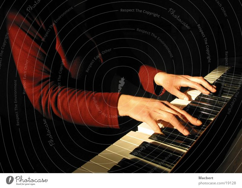 Woman Hand Sun Music Touch Piano