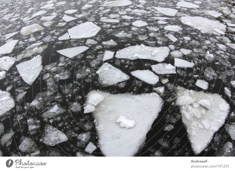 Nature Water Winter Cold Snow Environment Landscape Ice Climate Frost River Frozen Float in the water Climate change Spree Ice floe