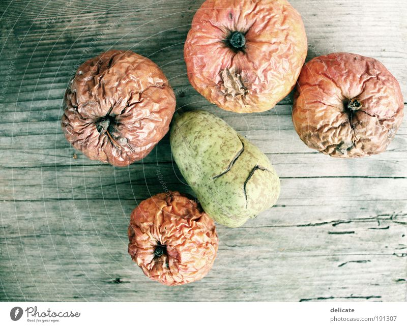 Vintage apples (and pear) Fruit Apple Nature Autumn Old Lie Hideous Beautiful Dry Brown Yellow Green Red Colour photo Exterior shot Close-up Deserted
