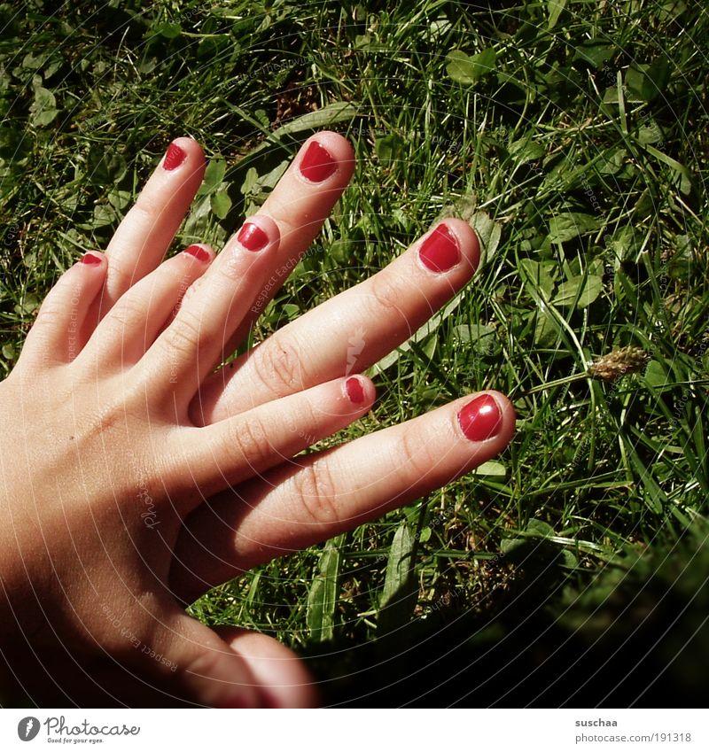 Nature Hand Red Summer Joy Meadow Playing Grass Garden Park Infancy Happiness Fingers Human being Idyll Joie de vivre (Vitality)