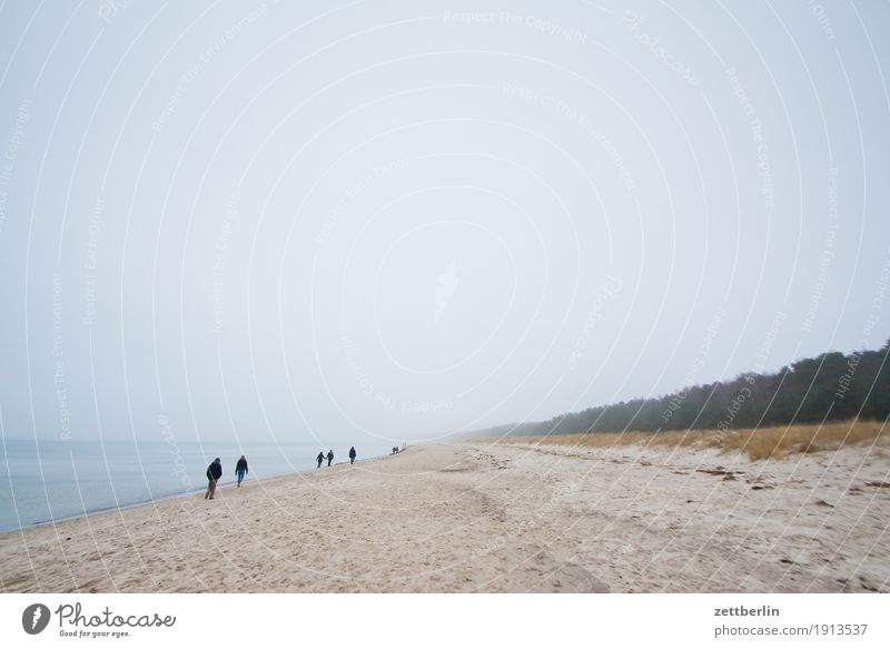 About ten people on the beach. Relaxation Vacation & Travel Far-off places Autumn Sky Heaven Island Coast Landscape Mecklenburg-Western Pomerania