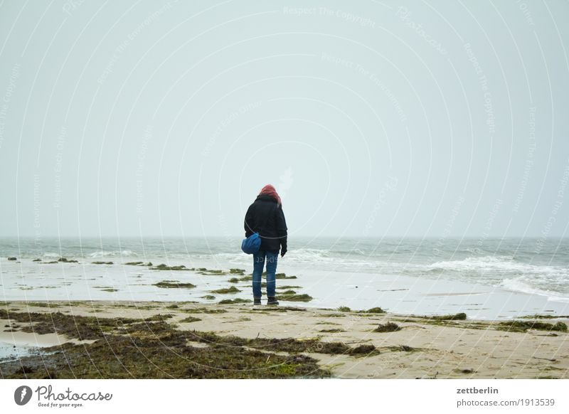 Human being Woman Sky Nature Vacation & Travel Landscape Relaxation Loneliness Far-off places Winter Beach Autumn Coast Sand Horizon Copy Space