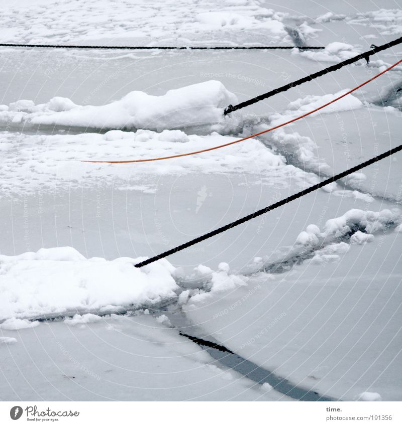 Water White Winter Cold Gray Ice Rope Frost Harbour Frozen Diagonal Tension To break (something) Motionless Ice floe Fracture point