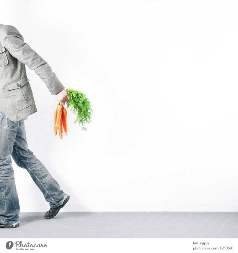 Human being Nature Man Green Hand Plant Adults Life Legs Healthy Orange Vegetable Footwear Flat (apartment) Back Arm