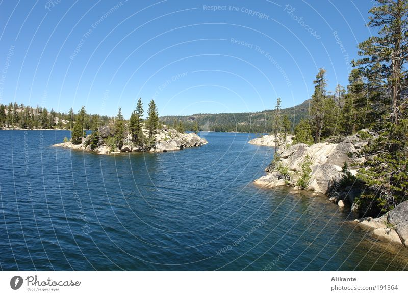 Silver Lake Nature Landscape Elements Water Cloudless sky Summer Beautiful weather Tree Wild plant Forest Rock Mountain Island Breathe Relaxation Esthetic Cold
