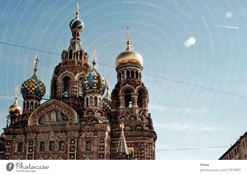 Build on blood Tourism Sightseeing City trip Travel photography Architecture Culture St. Petersburgh Russia Russian Church Cathedral Tourist Attraction Landmark